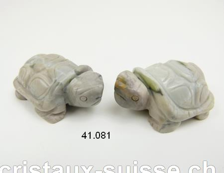Tortue Jaspe gris clair, long. environ 5 cm